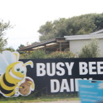 Everyone Freaked Remembering Busy Bee Sandwiches!!!
