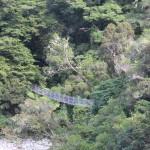 River Hike Bridge