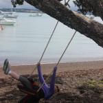 Swing Found